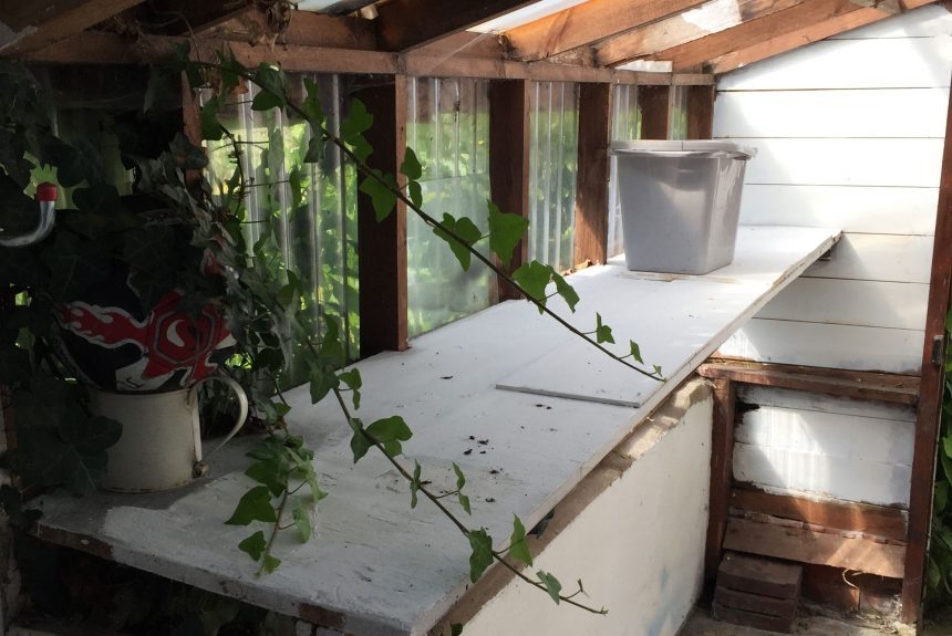 Inside the outhouse before renovation